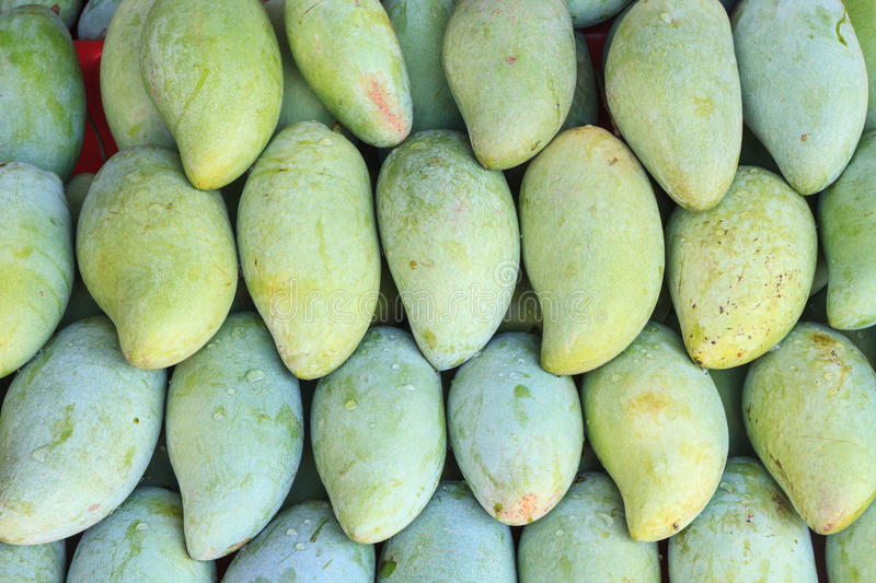 Mangoes in the market royalty free stock photography