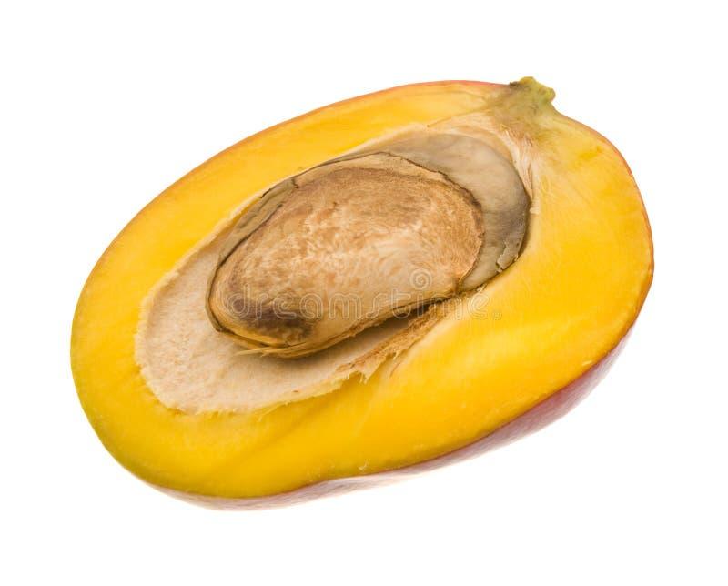 Mangofrucht stockfotografie