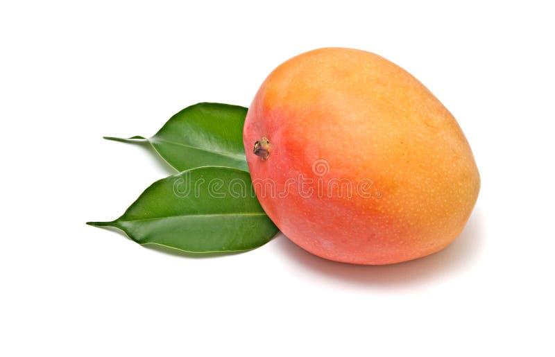 Mangofrucht auf Blättern stockfoto