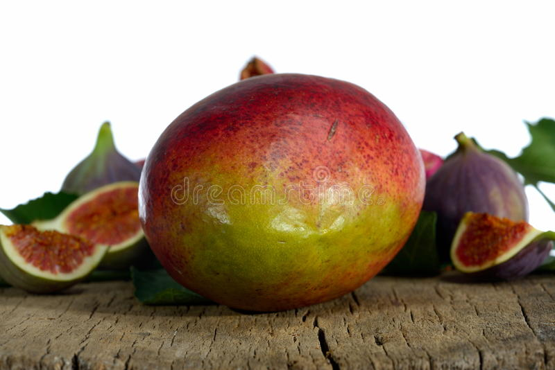 Mangofrukt och fikonträd fotografering för bildbyråer