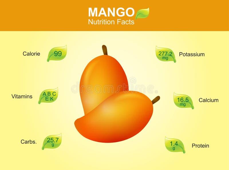 Mangonäringfakta, mangofrukt med information, mangovektor stock illustrationer
