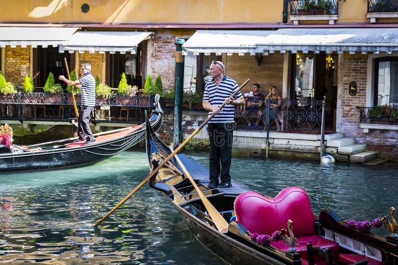 Mangondolj?rer k?r gondoler med turister i Venedig i Italien royaltyfri foto