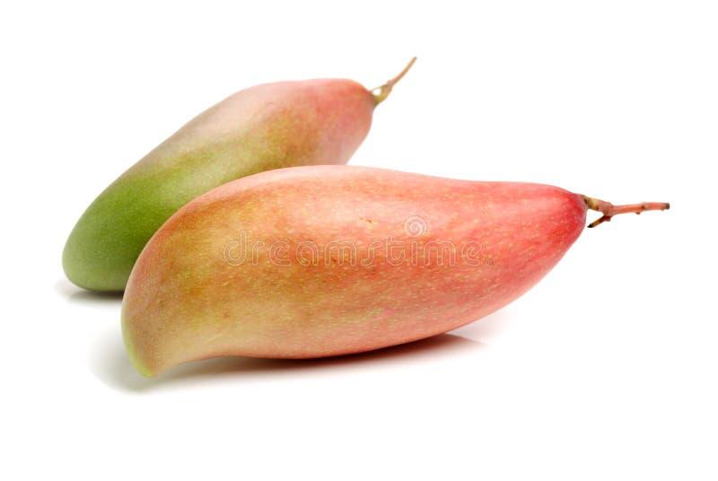 mangopflaume Natur, Lebensmittel lizenzfreie stockbilder