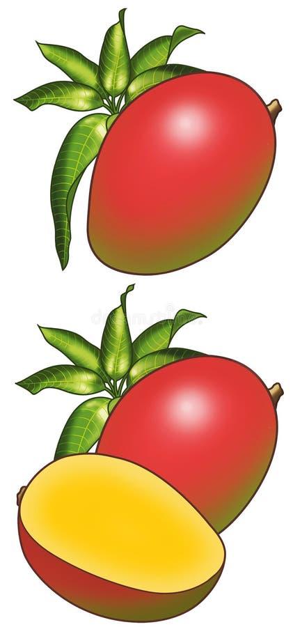 mangos 库存图片