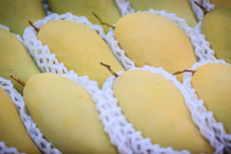 Mangos orgánicos de Nam Dok Mai para la venta en la mercado de la fruta El Na imagen de archivo