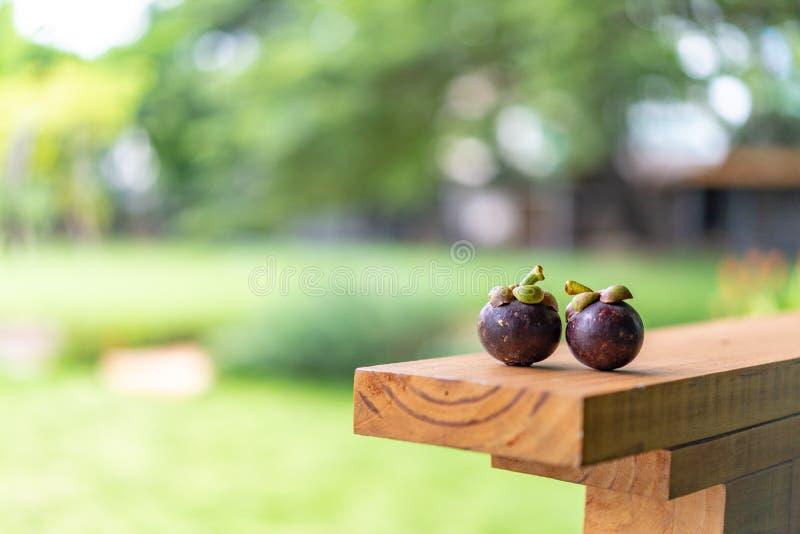 Mangost?n en la placa de madera, con el fondo de la naturaleza del verde del bokeh de la falta de definici?n fotos de archivo