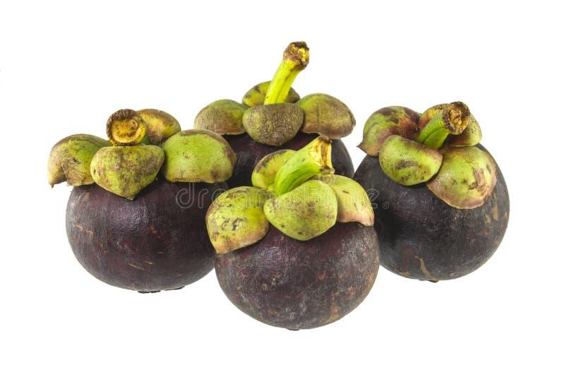 Download Mangostan zdjęcie stock. Obraz złożonej z juiced, roślina - 41950698