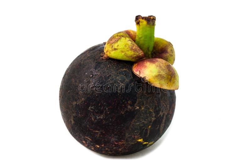 Mangostanfrucht stockfotografie