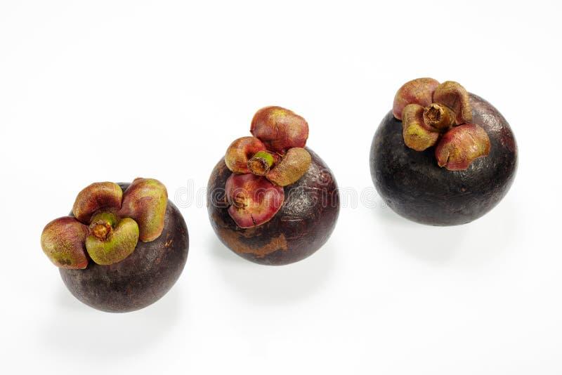 Mangostanfrucht lizenzfreie stockfotografie