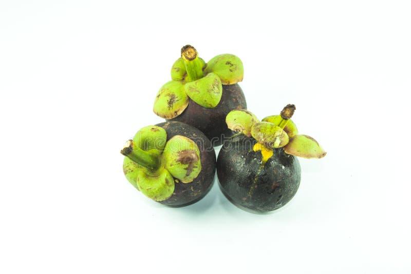 Mangostanfrucht der weiße Hintergrund lizenzfreie stockfotos
