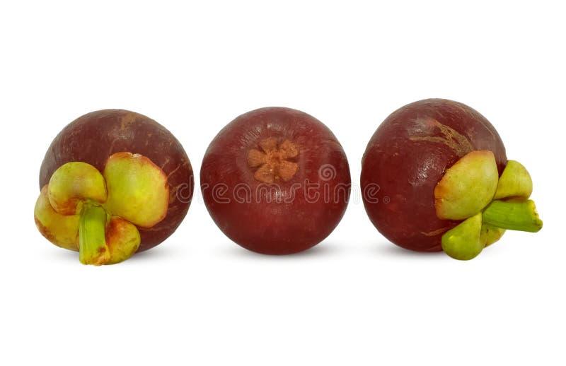 Mangostanfrucht lokalisiert auf Weiß stockfotos