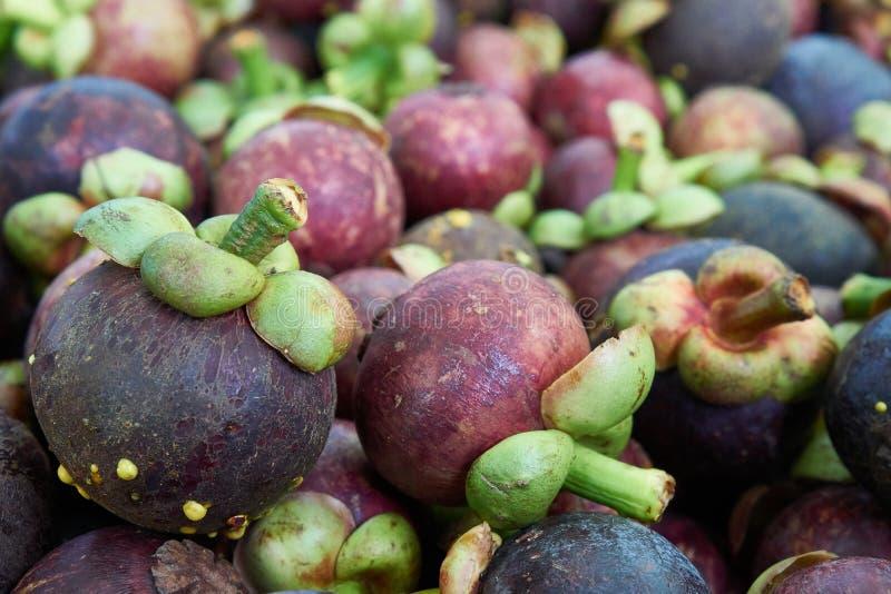 Mangostanfruchtfrucht am Stapel zusammen für Verkauf stockbild
