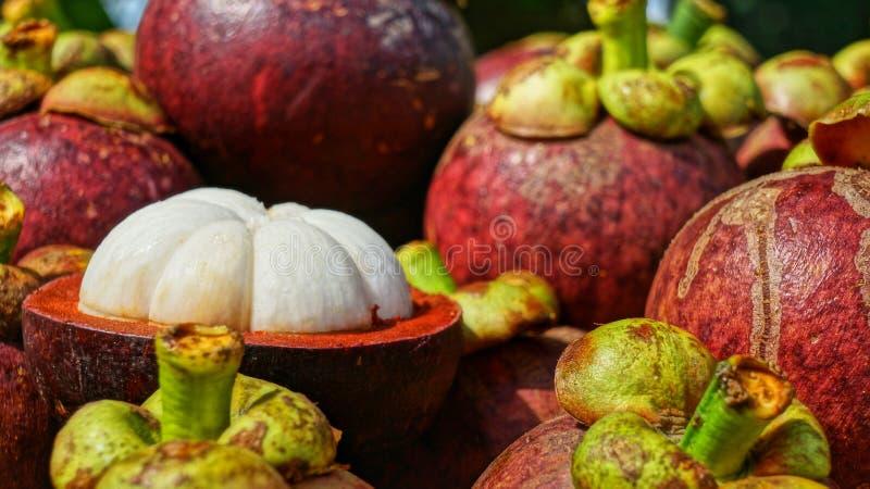 Mangostansbos van vruchten, rijpe die mangostan met zichtbare pulp wordt gehalveerd stock foto's