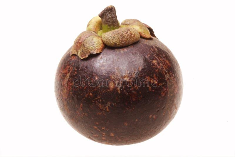 Mangosteen fruit stock photos