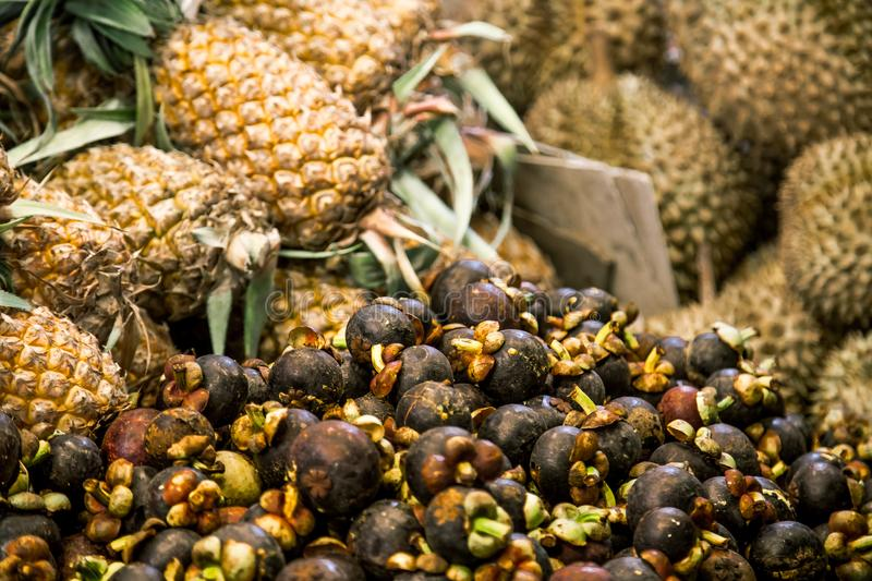 Mangosteen and pineapple royalty free stock photography