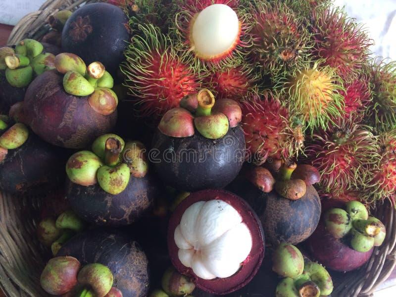 Mangosteen and Rambutan stock photos