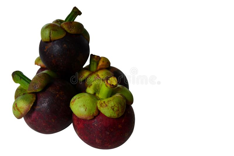 mangosteens on white background royalty free stock photography