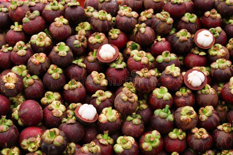 Mangoustan image stock