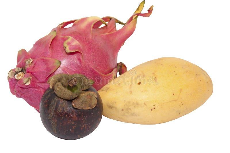 Mangoustan, mangue et fruit du dragon images libres de droits