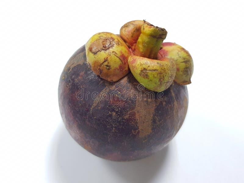 Mangoustan Un fruit tropical avec des segments blancs juteux doux de chair ? l'int?rieur d'une ?corce brun-rouge?tre ?paisse image libre de droits