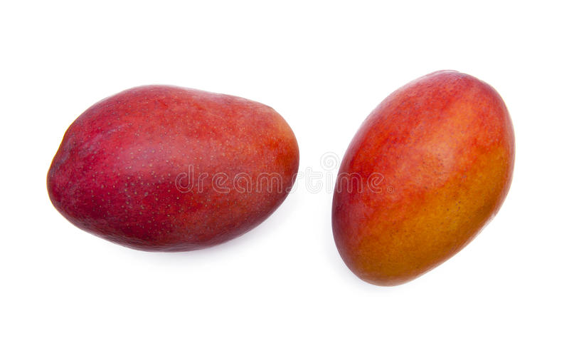 Mangovruchten stock afbeelding
