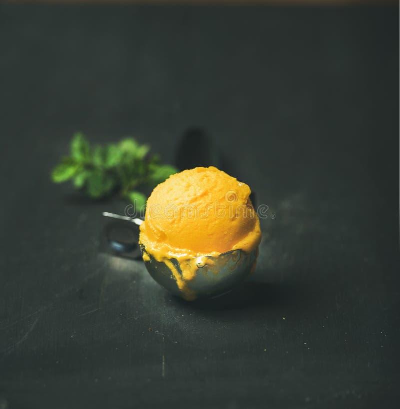 Mangowa sorbet lody miarka, kwadratowa uprawa, kopii przestrzeń obrazy royalty free