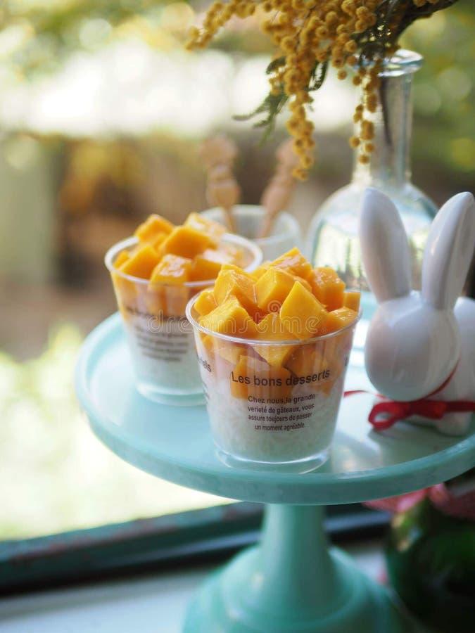 Mangowy kokosowy kleisty ryżowy pudding, verrine obraz royalty free