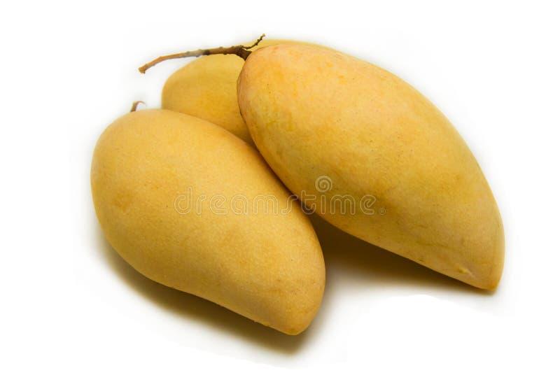 Mangowy rozprucie zdjęcia royalty free