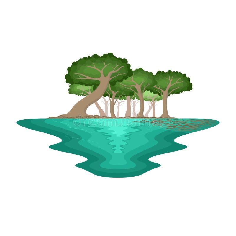 Mangrove Forest Swamp Environment Tropical Landscape. Vector vector illustration
