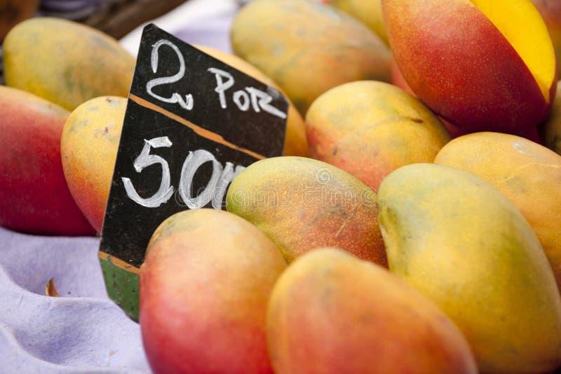 Mangue photos stock