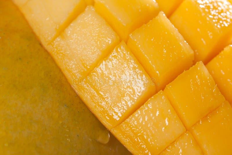 Mangue image stock