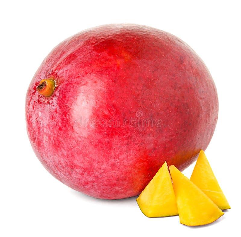 Mangue images stock