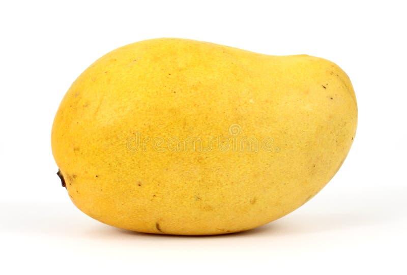 Mangue jaune photographie stock libre de droits