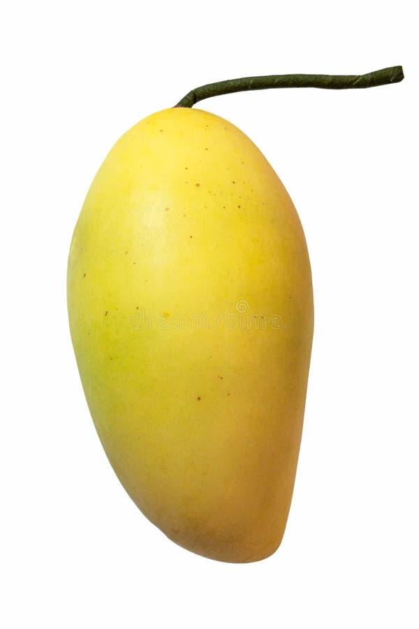 Mangue jaune mûre simple d'isolement sur le blanc avec le chemin de coupure photo libre de droits