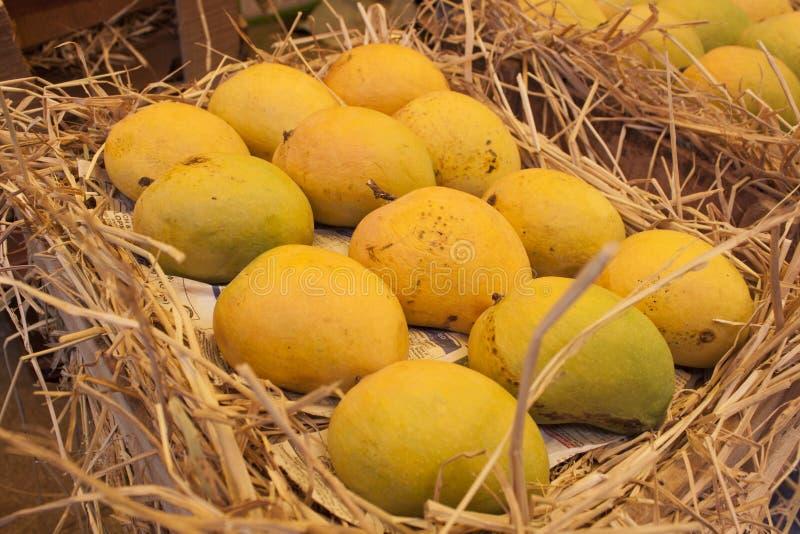 Mangues indiennes Alphonso image libre de droits