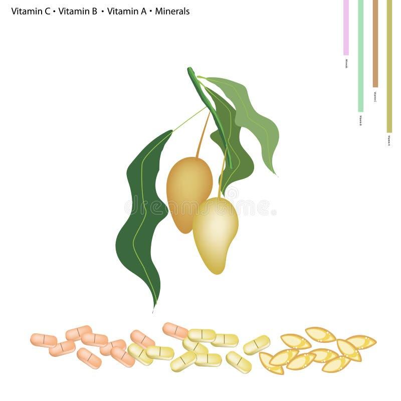 Mangues mûres avec la vitamine C, le B, l'A et les minerais illustration libre de droits