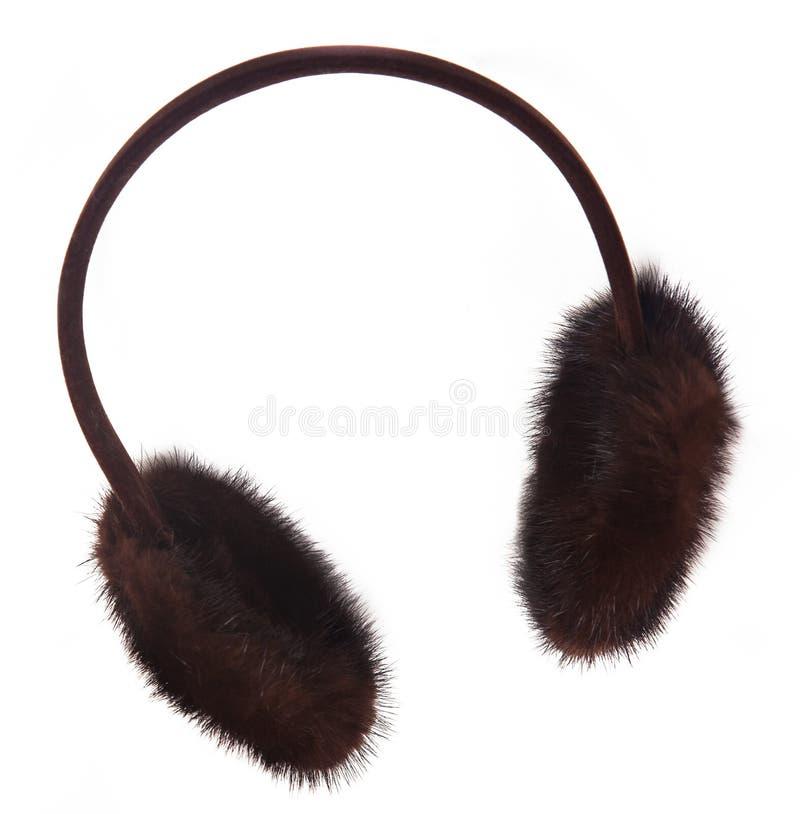 Manguitos lindos del oído foto de archivo libre de regalías
