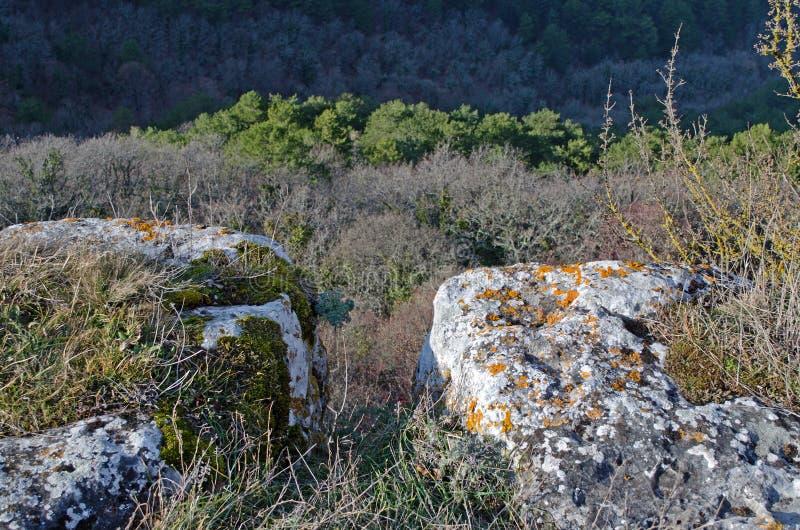 Mangup-chou frisé de plateau (Crimée) photo libre de droits