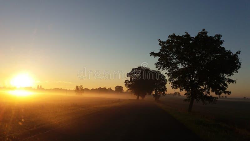 Manhã fotos de stock royalty free