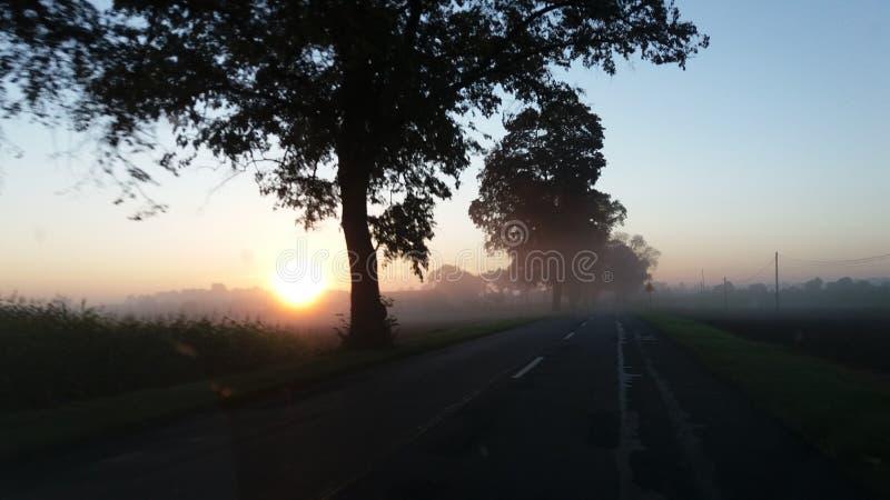Manhã imagens de stock royalty free