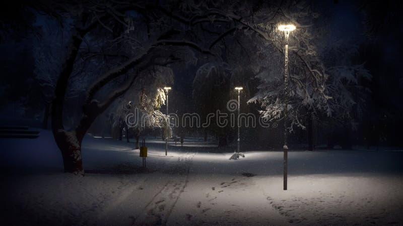 Manhã adiantada do inverno no parque local na queda de neve imagem de stock royalty free
