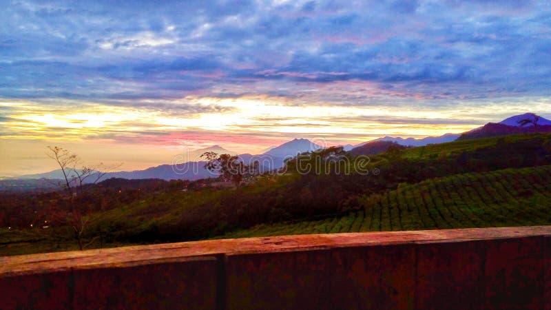 Manhã bonita com nascer do sol imagem de stock royalty free