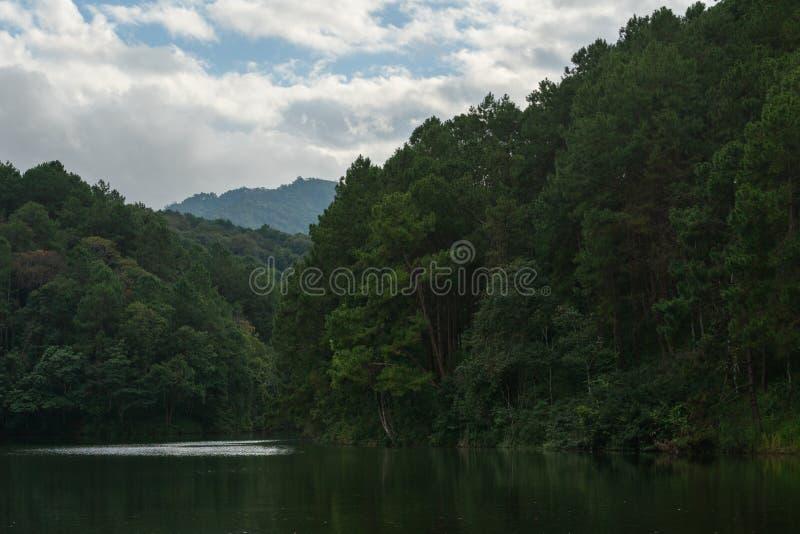 Manhã bonita em montanhas ao norte de Tailândia fotografia de stock royalty free