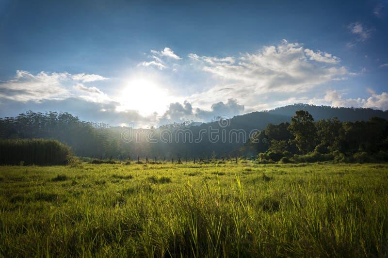 Manhã bonita em Ranca Upas fotografia de stock royalty free