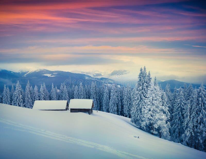 Manhã colorida do inverno em montanhas Carpathian imagens de stock royalty free