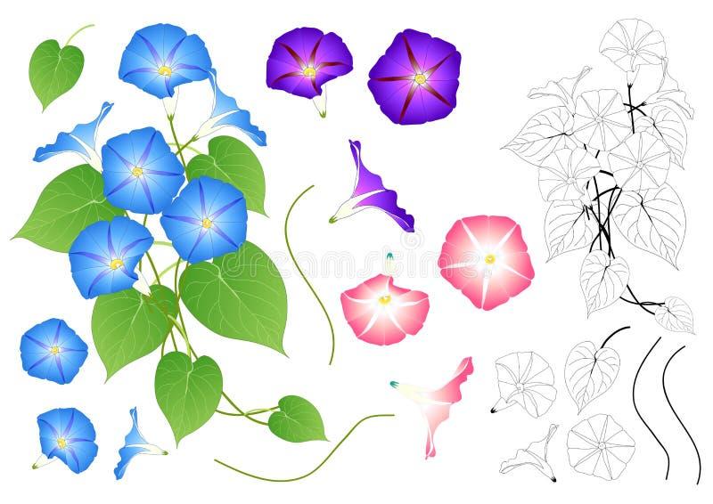Manhã cor-de-rosa e roxa azul Glory Outline Isolado no fundo branco Ilustração do vetor ilustração royalty free