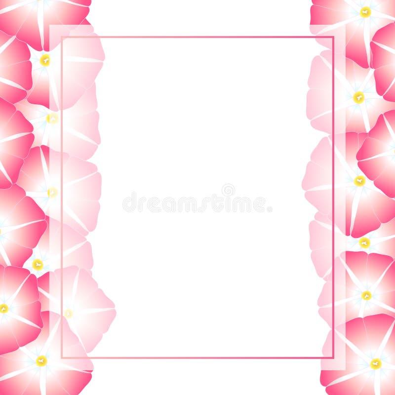 Manhã cor-de-rosa Glory Flower Banner Card Border Ilustração do vetor ilustração stock