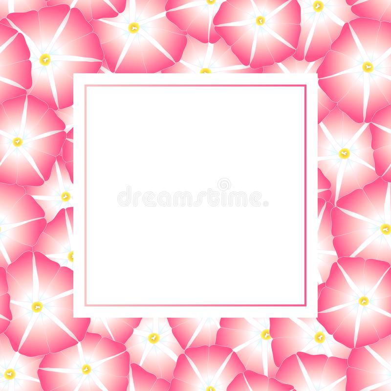 Manhã cor-de-rosa Glory Flower Banner Card Border Ilustração do vetor ilustração do vetor