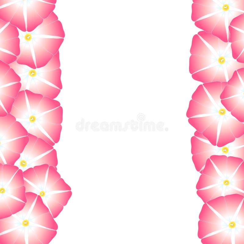Manhã cor-de-rosa Glory Flower Border Ilustração do vetor ilustração royalty free