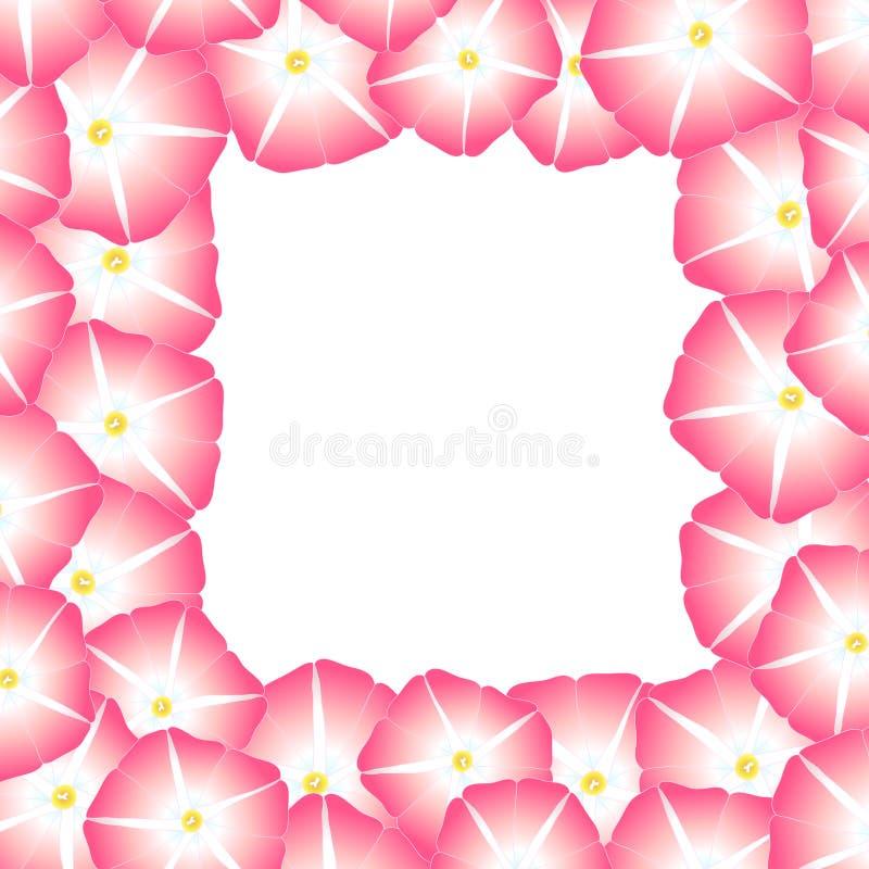 Manhã cor-de-rosa Glory Flower Border Ilustração do vetor ilustração stock